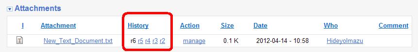 attachment-past-version-links.png